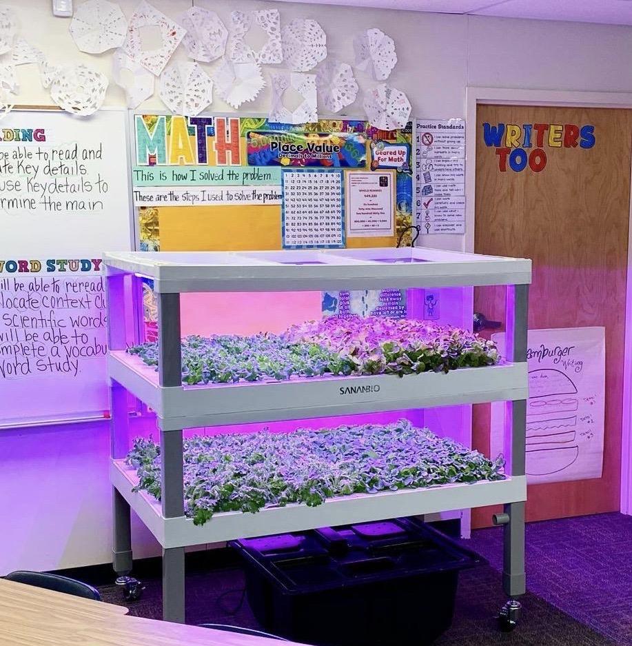 Kit Vertical Farming per le scuole.
