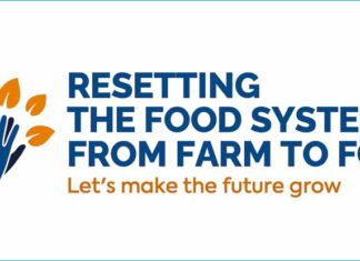 Resetting the food system