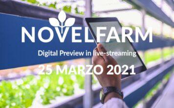 Novel Farm 2021